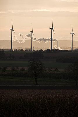 Windräder an einem Herbstmorgen - p739m1497450 von Baertels
