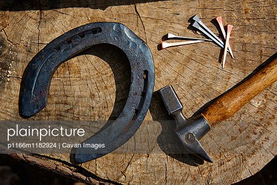 p1166m1182924 von Cavan Images