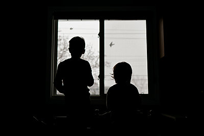 Two children looking out their kitchen window at birds flying by - p1166m2269023 by Cavan Images