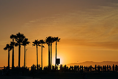 People by palm trees at sunset in Los Angeles, USA - p1350m1423207 by Luxy Images