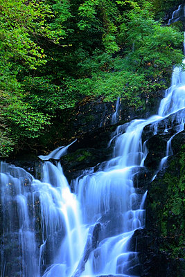 Torc Waterfall, Killarney National Park, County Kerry, Ireland - p4429475f by Design Pics