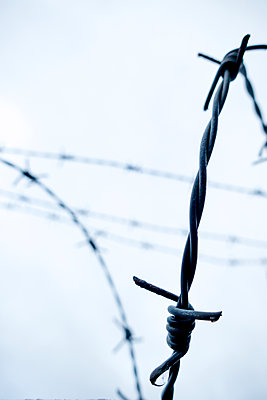 Barbed wire against overcast sky - p1302m1588935 by Richard Nixon