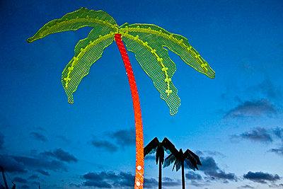 Artificial palms - p2280528 by photocake.de