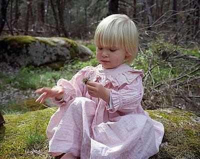 Im Wald - p945m701079 von aurelia frey