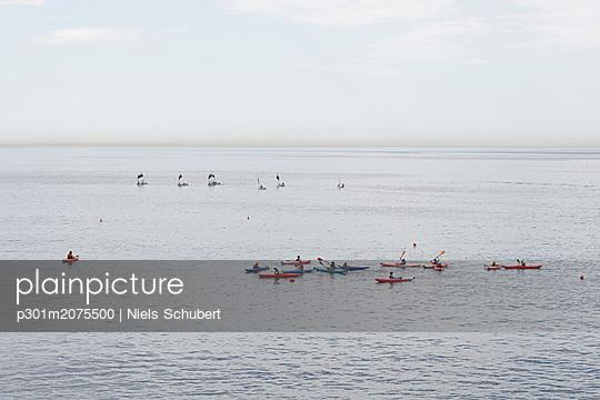 p301m2075500 von Niels Schubert