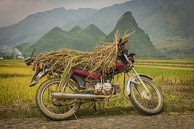 A motorbike parked along the roadside is covered with rice husks, Northern Vietnam - p934m893118 by Sebastien Loffler