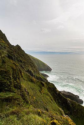 Steep coast Oregon - p756m2053397 by Bénédicte Lassalle