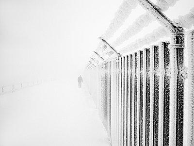 Winter - p992m720996 von Carmen Spitznagel
