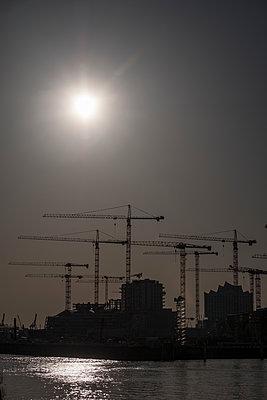 Several cranes on construction site, Hamburg harbour - p229m2263872 by Martin Langer
