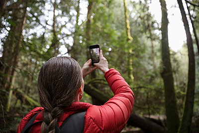 Female hiker with camera phone photographing trees in woods - p1192m2000473 by Hero Images