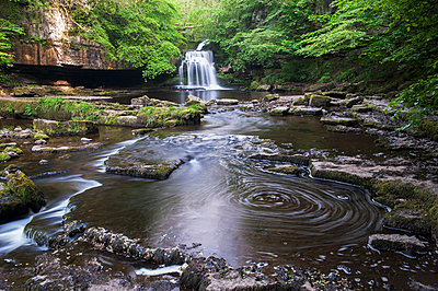 Cauldron Falls at West Burton; Wensleydale, North Yorkshire, England - p442m1033640f by Wayne Hutchinson