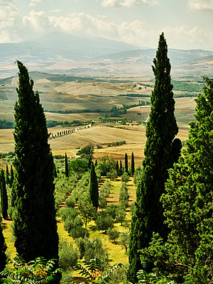 Tuscany, Pienza - p968m987229 by roberto pastrovicchio