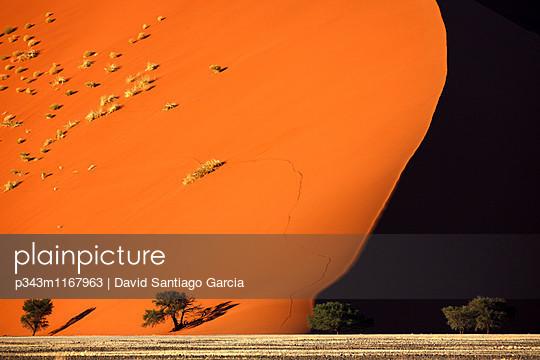 p343m1167963 von David Santiago Garcia