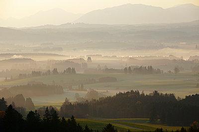 Fog in the morning - p7190113 by Rudi Sebastian