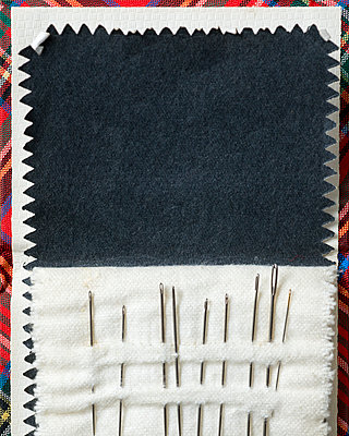 Old-fashioned needle case with nine sewing needles. - p1433m1589010 by Wolf Kettler