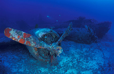 Propeller of B 17 bomber, also called Blackjack. Underwater/Papua New Guinea. - p3435367 by Jurgen Freund