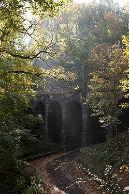Brücke im herbstlichen Wald - p893m2021686 von Thomas Ebert