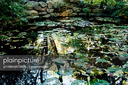 p1166m2073626 von Cavan Images