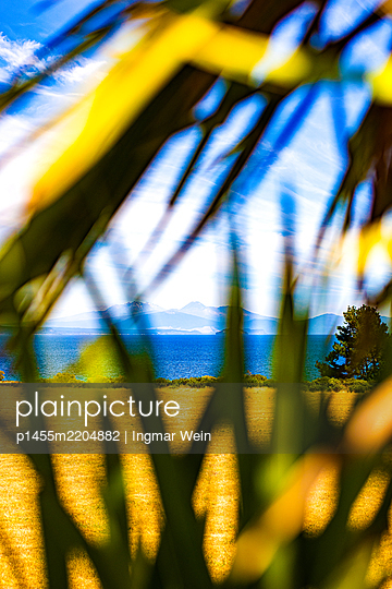 Beach, water, mountains, seen through palm leaves - p1455m2204882 by Ingmar Wein