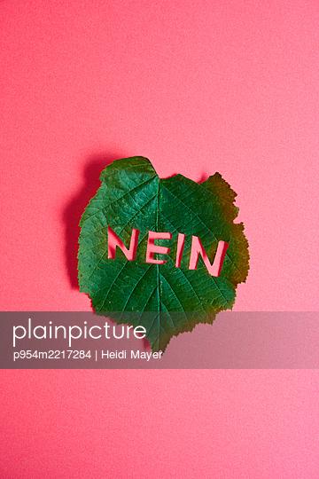 Haselnussblatt mit NEIN Schriftzug - p954m2217284 von Heidi Mayer