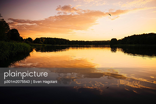 p301m2075543 von Sven Hagolani