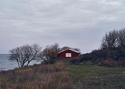 Rotes Haus am Meer - p1124m1195163 von Willing-Holtz
