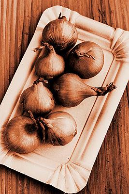 Onions - p450m1039273 by Hanka Steidle