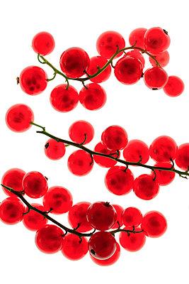 Rote Johannisbeeren   - p450m1042334 von Hanka Steidle