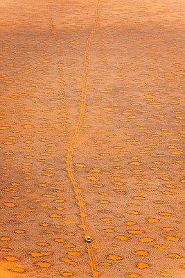 Namib Desert, Namibia, Africa - p871m1082245 by Neil Emmerson
