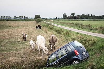 Unfall in Ostfriesland - p1222m2054060 von Jérome Gerull