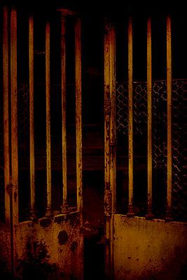 Gate - p1028m2222506 by Jean Marmeisse