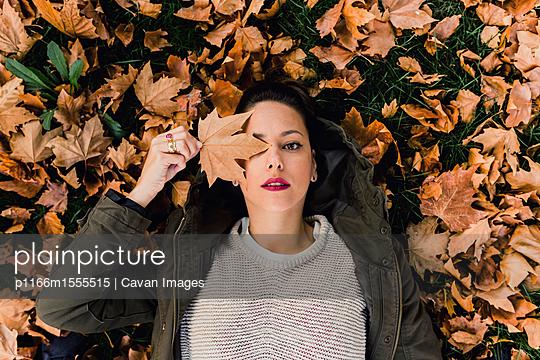 p1166m1555515 von Cavan Images