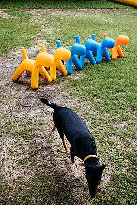Thailand,  Designer plastic dogs - p728m2217727 by Peter Nitsch