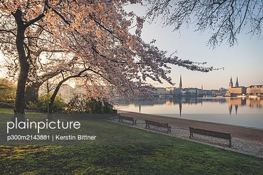 Cherry trees by Binnenalster lake against sky during springtime in Hamburg, Germany - p300m2143881 by Kerstin Bittner
