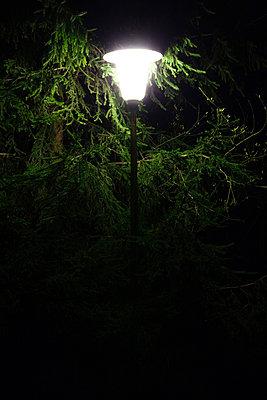 Laterne bei Nacht - p3300365 von Harald Braun