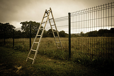 Ladder - p829m972306 by Régis Domergue