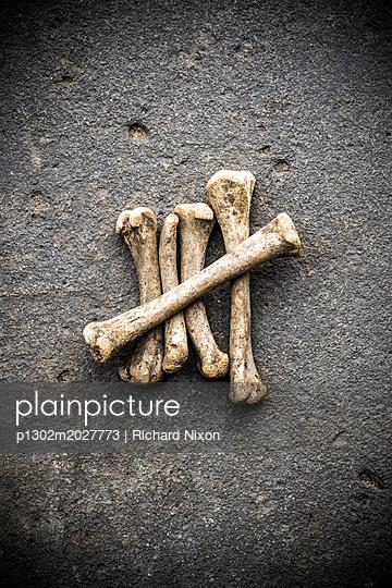 Fünf Knochen arrangiert als Strichliste - p1302m2027773 von Richard Nixon