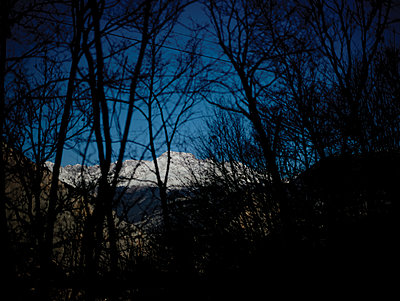 Mountain ridge seen through branches at night - p1462m1525586 by Massimo Giovannini