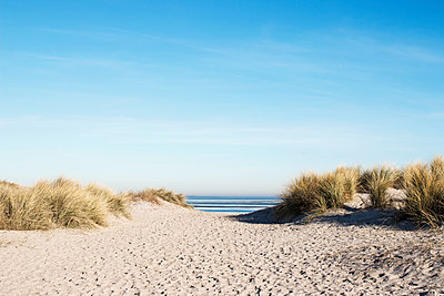 Zugang zum Strand - p1574m2158136 von manuela deigert