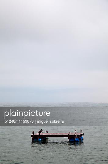 Plattform auf dem Wasser - p1248m1159873 von miguel sobreira
