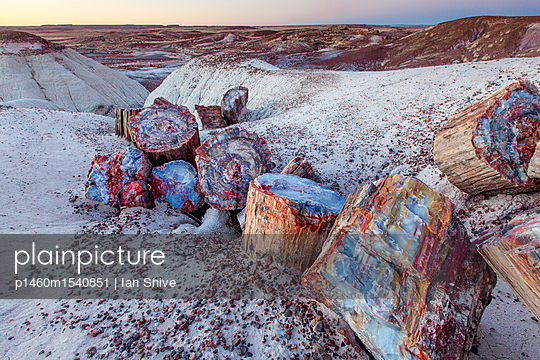 Petrified Forest National Park, Arizona: Large and colorful rock formations lay on the desert floor. - p1460m1540851 by Ian Shive