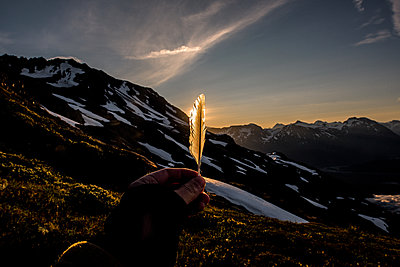 Alaska, Backlit, Person holding feather - p1455m2204768 by Ingmar Wein
