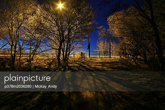 p378m2036280 von Mckay Andy