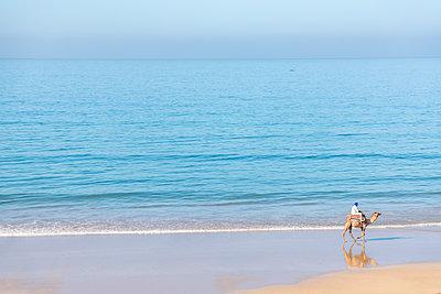 Morocco, Man on camel at the beach - p300m2030129 von Michael Malorny