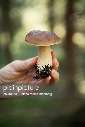 p6943373 von Helena Modin Blomberg