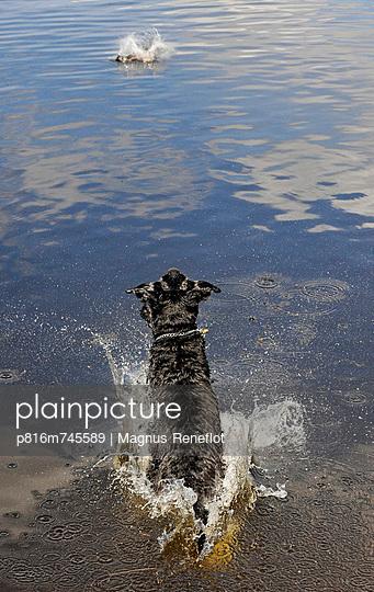 p816m745589 von Magnus Reneflot