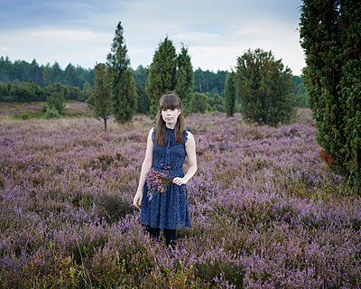 Picking heath - p1124m931799 by Willing-Holtz