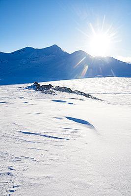 Spitzbergen Svalbard - p1203m1132403 von Bernd Schumacher