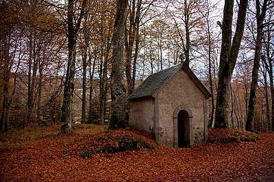 Chapel in a forest - p445m731856 by Marie Docher