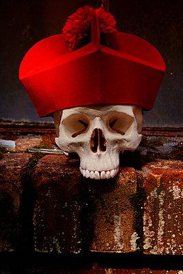 Totenkopf mit Kardinalshut - p3300282 von Harald Braun